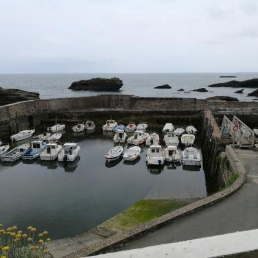 Les bateaux du Vieux-Port